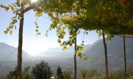 Ausblick Ueber Dorf Tirol Bei Meran Hotel Ansitz Golserhof