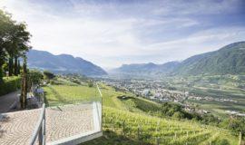 Blick Auf Die Weinberge Von Der Hotelterrasse C Tourismusverein Dorf Tirol Hotel Golserhof 0