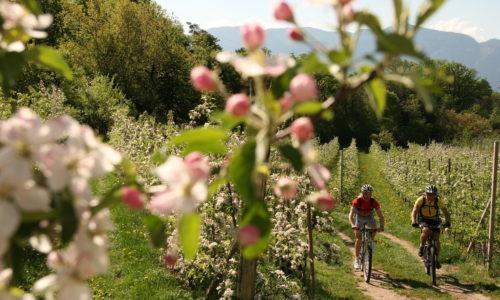 Talradweg Mit Dem Mountainbike Parc Hotel Am See