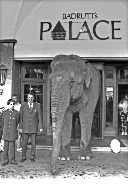 BPH Historie Elefant (c) Badrutt's Palace Hotel
